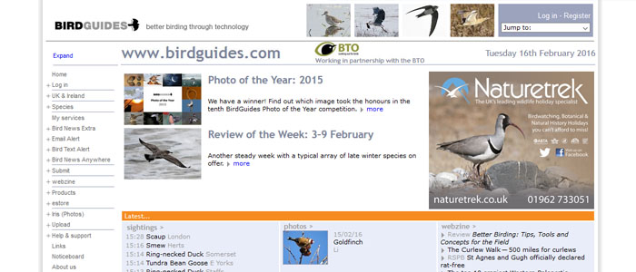 birdwatch page headers