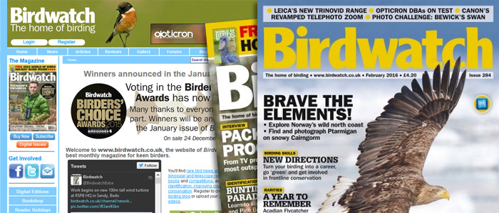 birdwatch-page headers